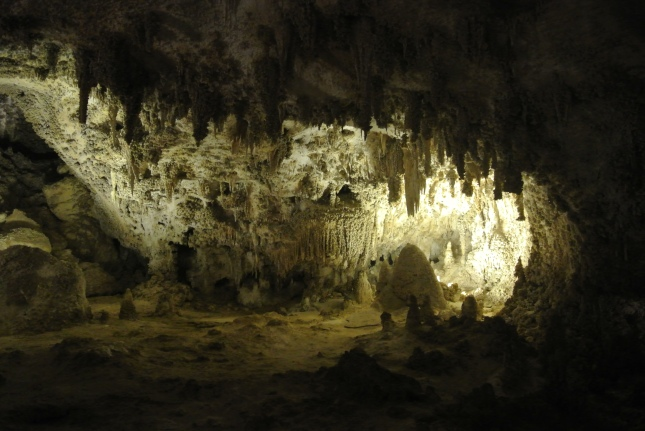 Carlsbad Caverns, NM 061
