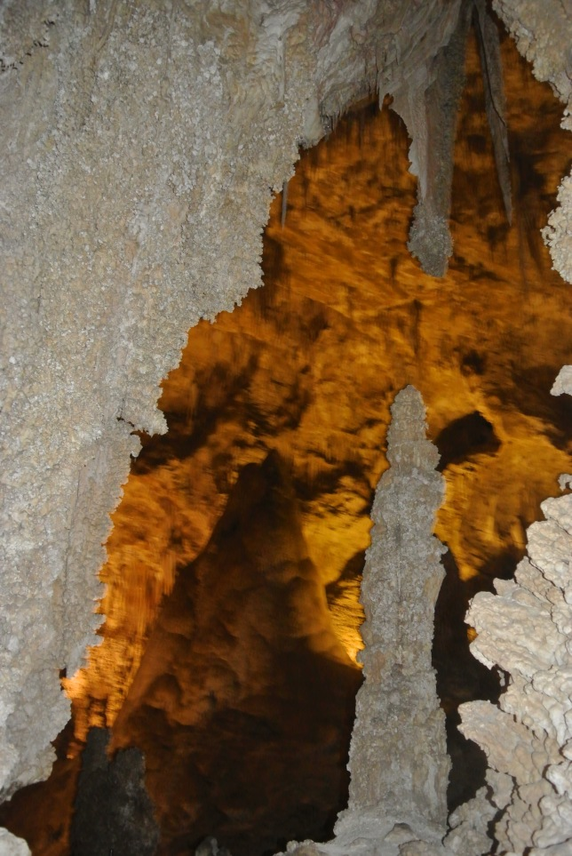 Carlsbad Caverns, NM 247