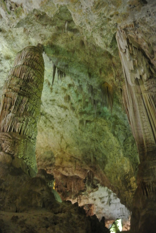 Carlsbad Caverns, NM 271